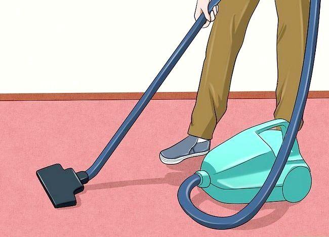 Imaginea intitulată Îndepărtați mirosul de urină pentru pisici Pasul 12