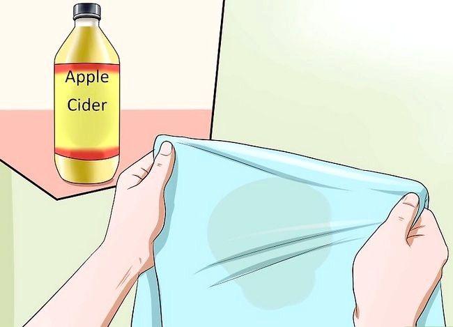 Imagine intitulată Îndepărtați mirosul de urină de pisică Pasul 7