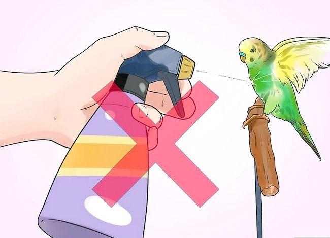 Imaginea intitulată Opriți un Budgie de la mușcătură Pasul 8