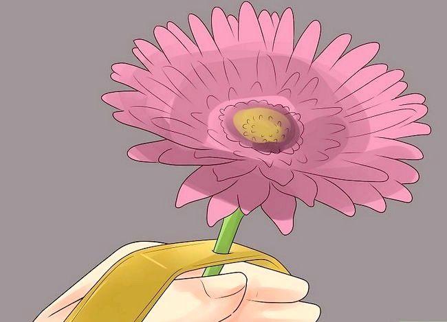 Imagine cu titlul Asigurați-un Corsaj încheietura mâinii Step 16