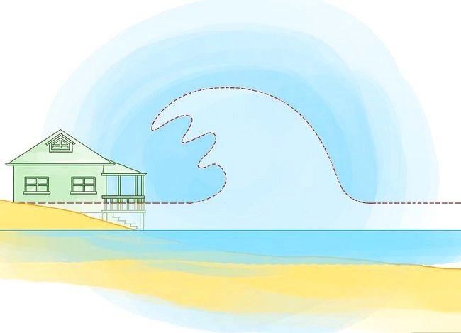 Supraviețuiți unui tsunami