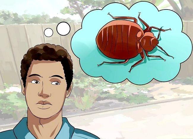 Evitați mușcăturile de insecte în timpul somnului