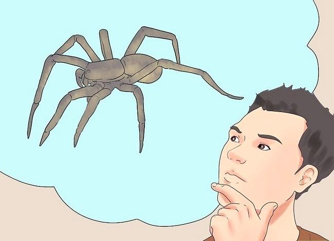 Imagine cu denumirea Tratează Spider Bites Pasul 17