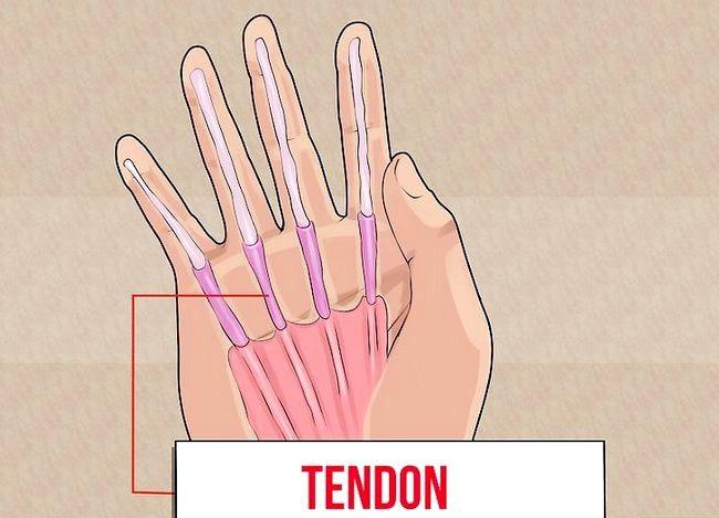 Imaginea intitulată Exercitarea degetelor Pasul 15