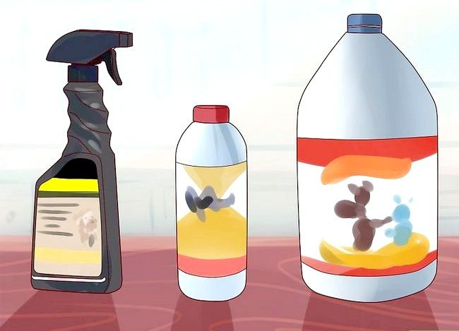 Imagine cu titlul Curăță urină de pisică Pasul 6