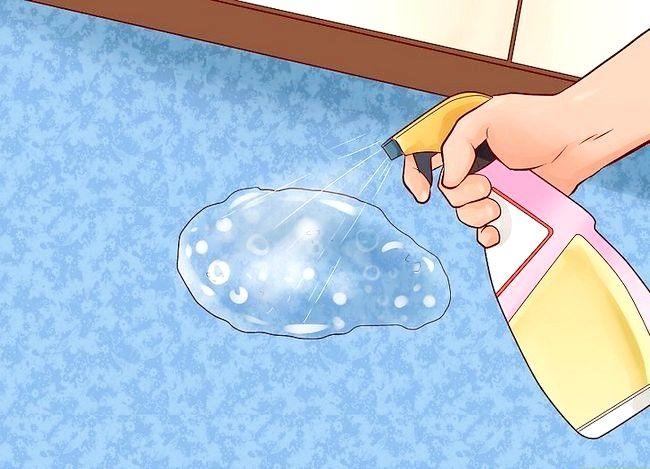 Imaginea intitulată Curăță urina de pisică Pasul 9