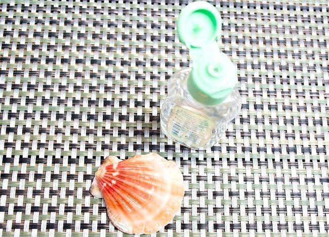 Imaginea intitulată Seashells curată și poloneză Pasul 11