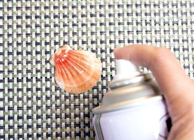 Imaginea intitulată Seashells curată și poloneză Pasul 12