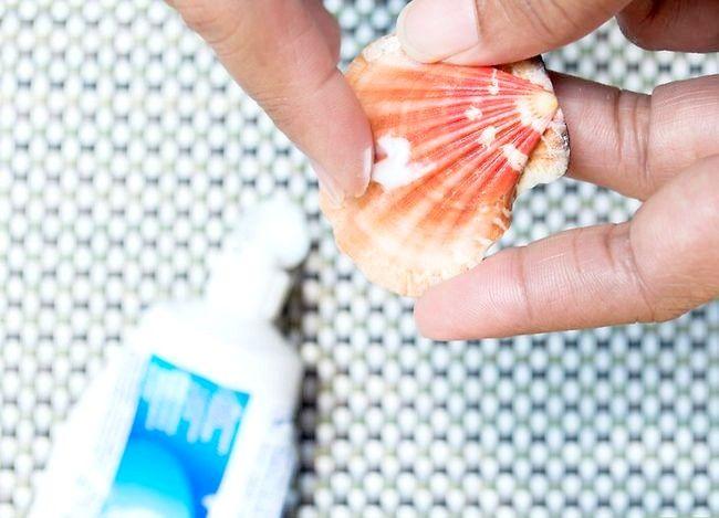 Imaginea intitulată Seashells curată și poloneză Pasul 9