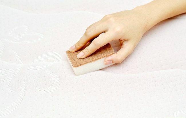 Imagine intitulată Îndepărtați petele de urină din saltete Pasul 1