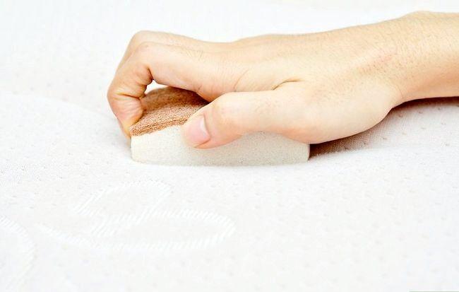 Imaginea intitulată Îndepărtați petele de urină din saltete Pasul 7