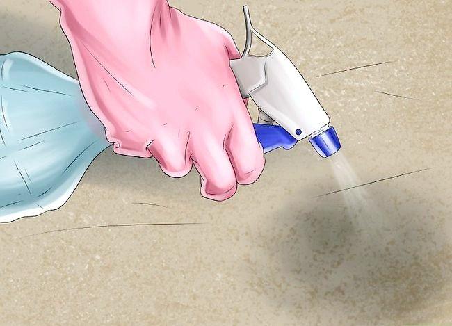 Imaginea intitulă Îndepărtați mirosul de urină pentru câini Pasul 5