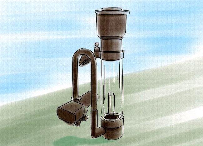 Imaginea intitulată Purify Water Step 9