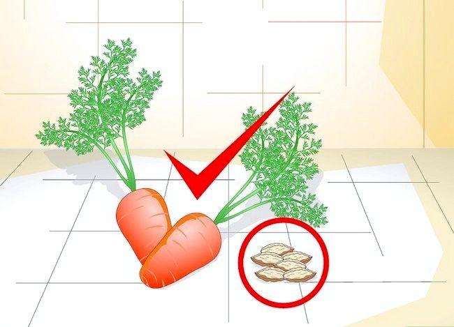 Creșteți morcovii în ghivece