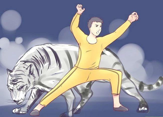 Imagine intitulată Învățați-vă pe Kung Fu singur Pasul 18
