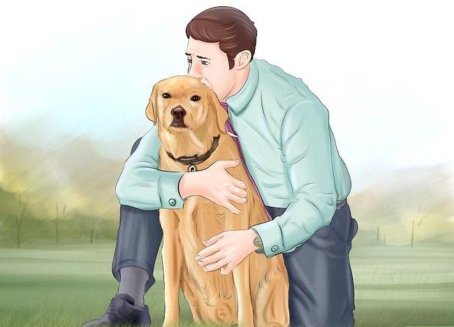 Asigurați-vă că câinele dvs. vă iubește