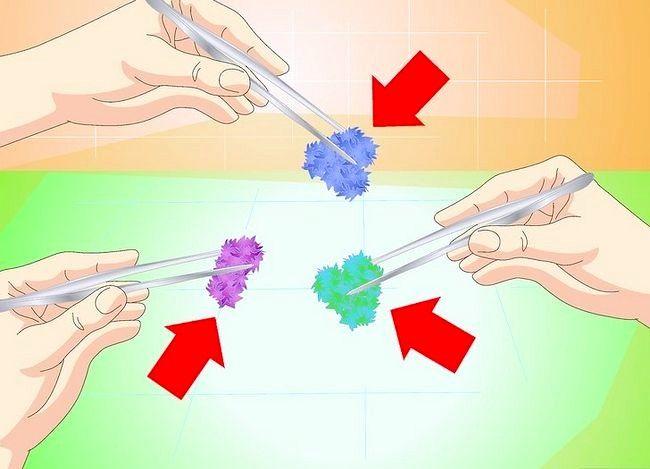 Imaginea cu titlul Faceți cristale de sare Pasul 18
